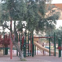 Playground and Olive Trees, Los Olivos Park