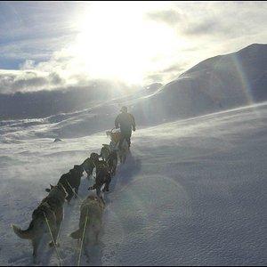 Tur på Hardangervidda
