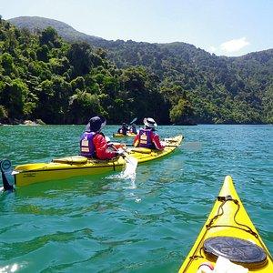 Explore the bush clad shorelines of the Marlborough Sounds by sea kayak