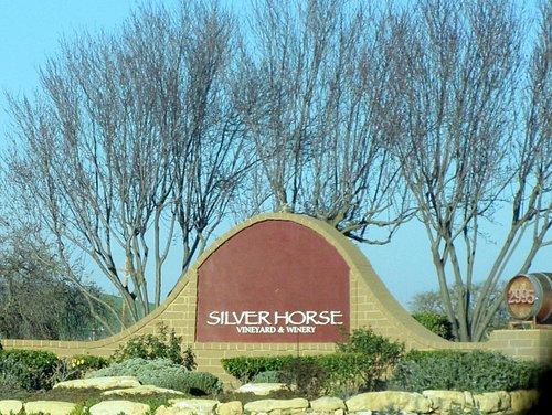Silver Horse Vineyard & Winery, San Miguel, Ca