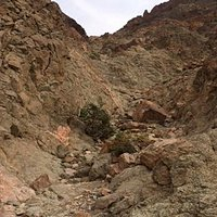 Trekking up Solomon's Mountain
