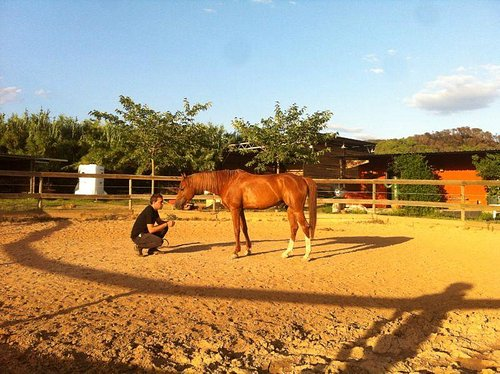 La conexión hombre-caballo