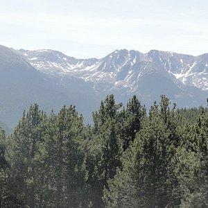 Vista geral das árvores com as montanhas ao fundo.