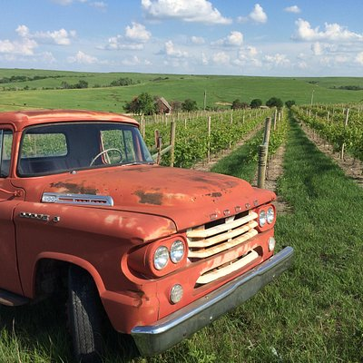 Big red at the top of the vineyard. Our tasting room is located at the base of the vineyard.