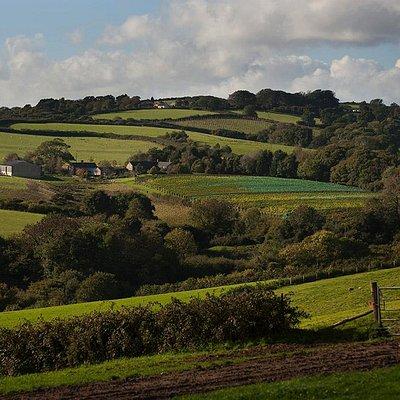 Furleigh Estate