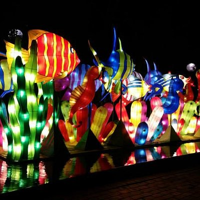 A display in one of the water features in Tumbalong Park