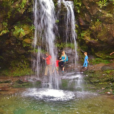 Fun hike to the falls in the Great Smoky Mountains of TN