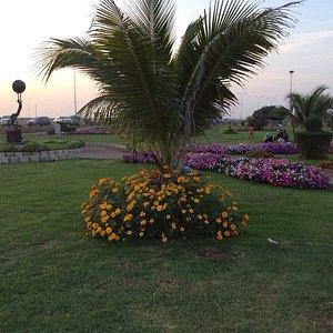 Major Khalid park