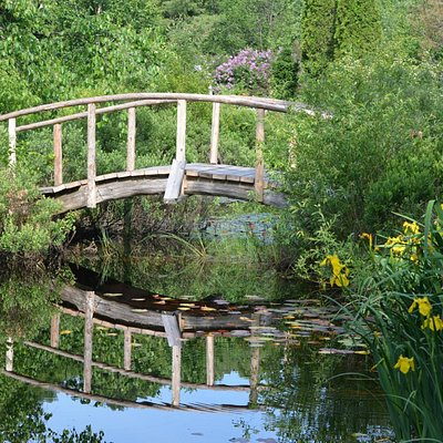 This rustic bridge over the ponds is a great to feed the turtles and watch the frogs.