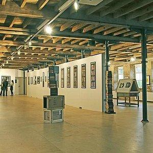 Phil Shaw exhibition