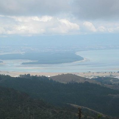 View over Nelson to the Tasman Sea