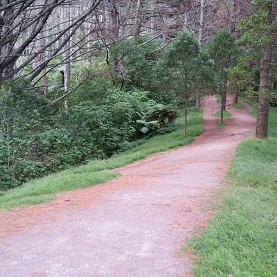 Trail is mostly uphill, but well-marked and maintained.