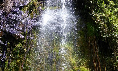 The waterfall - a cool spot in the forest