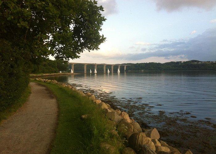 Vejlefjordbroen set fra stien omkring Skyttehushaven