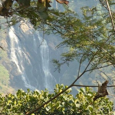 Meenmutty falls from Neelimala view point