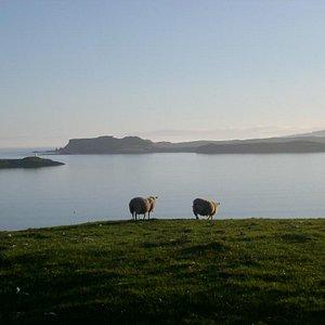 Loch Harport, Isle of Skye, Scotland