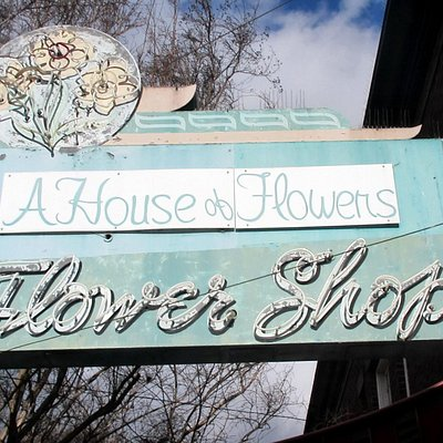 A House of Flowers, San Jose, Ca