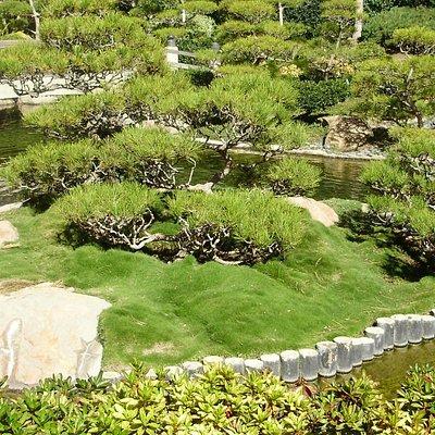 The grounds at Earl Burns Miller Japanese Garden