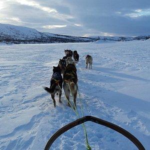 Crossing the frozen lake