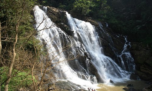 Meenmutty Water falls is resort boundry