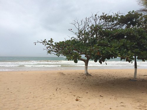 Praia D'ulé