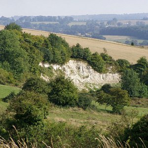 A view from the North Downs Way