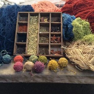 natural dying herbs