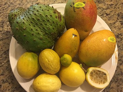 Selection of fresh fruit we just bought. Mangos are some of the best I've ever had!
