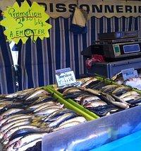 Fish, fish, fish at the market
