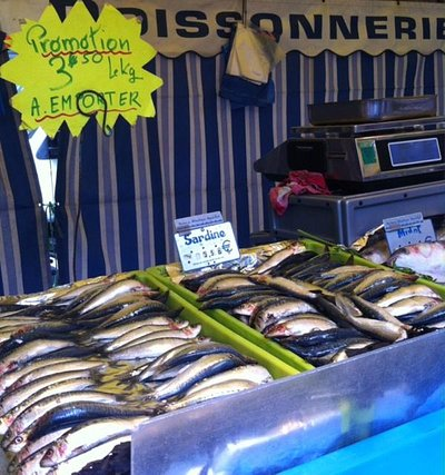 Fish, fish, fish at the market