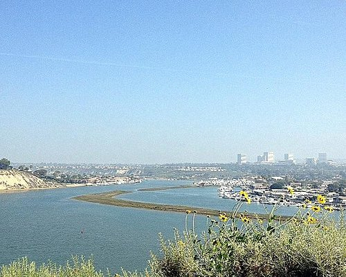 view of the Back Bay from the trail
