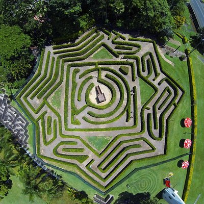 Aerial view of the 80x80m lilly pilly hedge maze