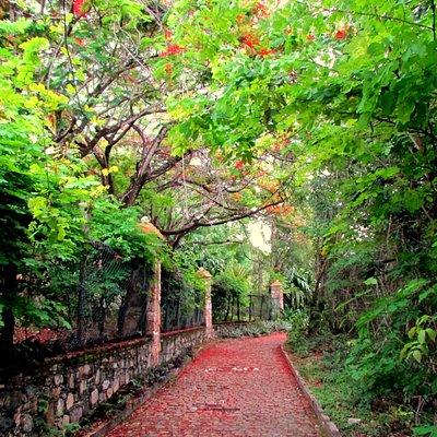 Caminho para o parque