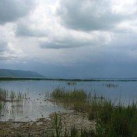 The Vrana Lake seen from NW (near the village of Vrana itself)