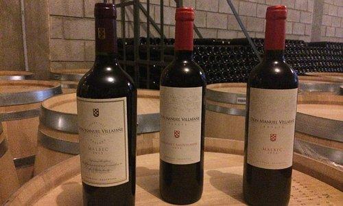 Alguns vinhos da família Don Manuel Villafañe