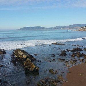 Thos Rocks are full of Sea life