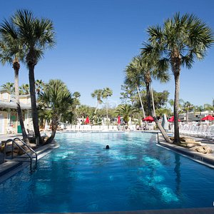 The Pool at the Tropical Palms Resort and Campground