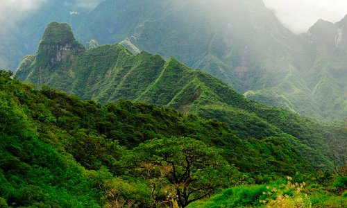 Mountain Trekking in Tahiti