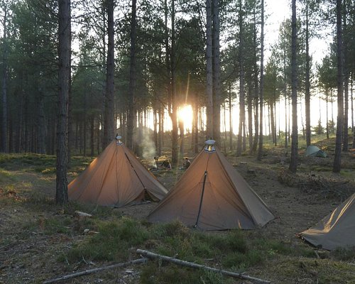 Family camps
