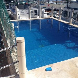 Private pool at dive center