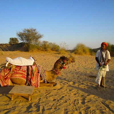 camel safari in Jaisalmer India Private Chauffeur