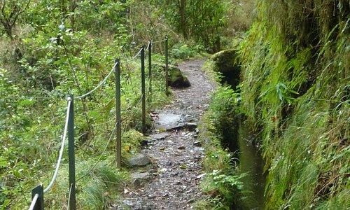 The Levada Path