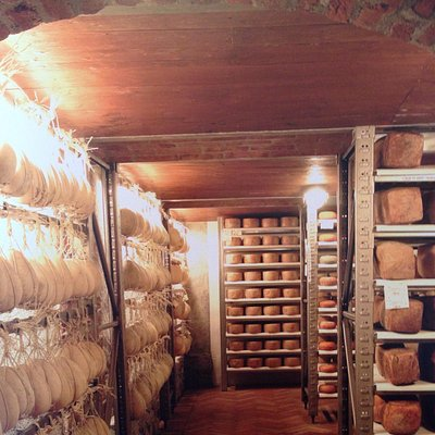 The cheese aging cave at Luigi Guffanti