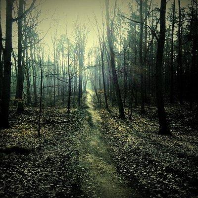 Amazing pathways to walk, run or bike