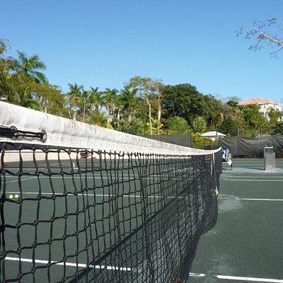 Balmoral tennis club