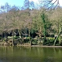 View across the River Derwent to the Gardens