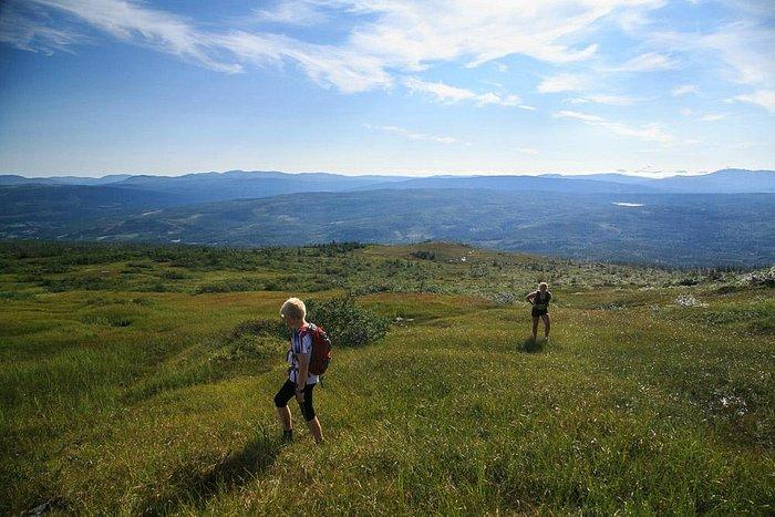 Sommereventyret i Meråker - Fjelltur - Mannfjellet