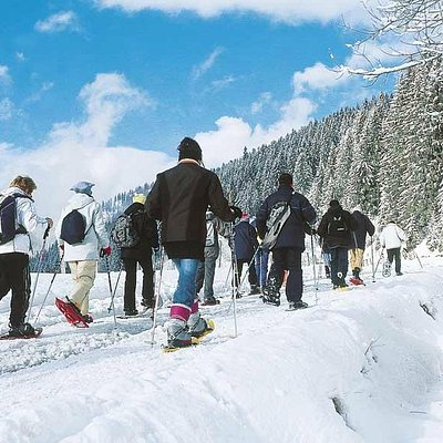 Snowshoe equipment and guided tours