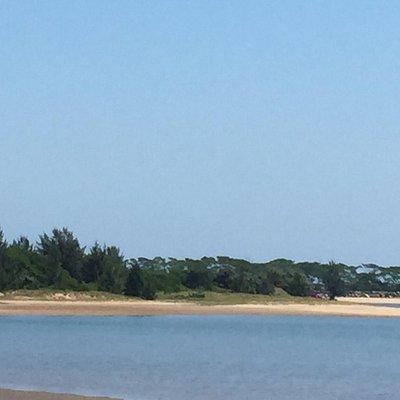 View of Pelican Island