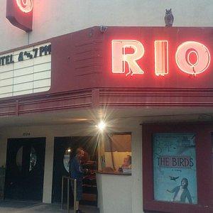 Night at the Rio theatre